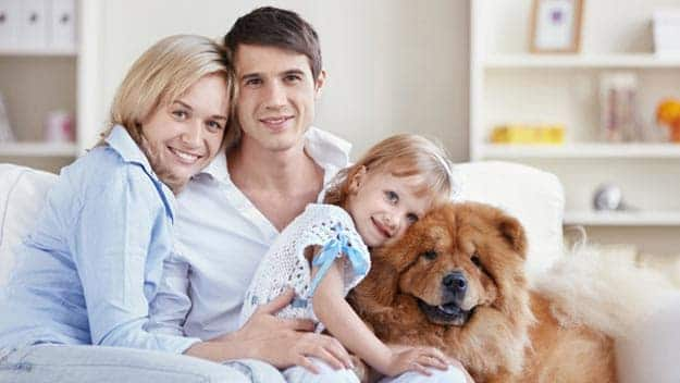 Wills & Trusts dog-young-family Direct Wills Deanshanger